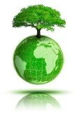 green_tree11
