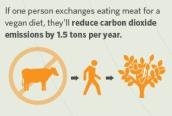 vegan-info